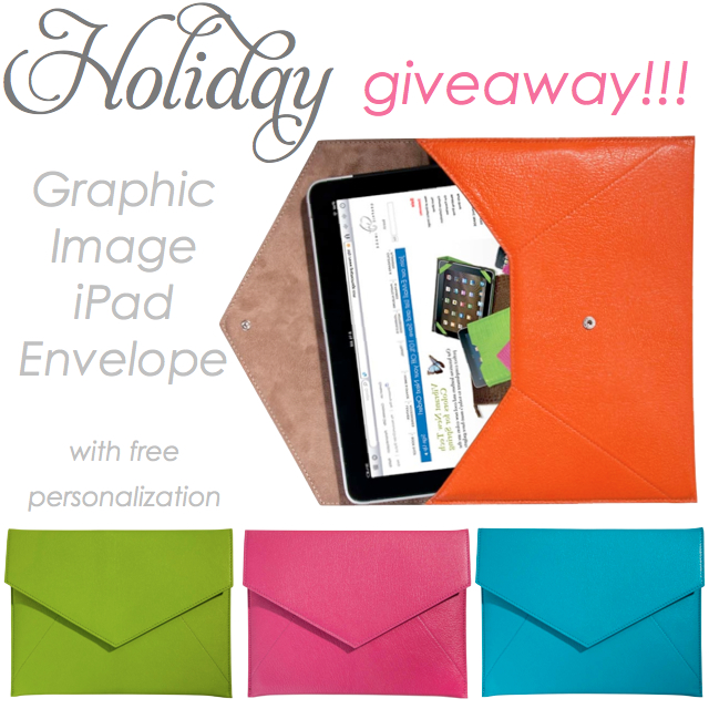 Graphic Image iPad envelope, iPad case